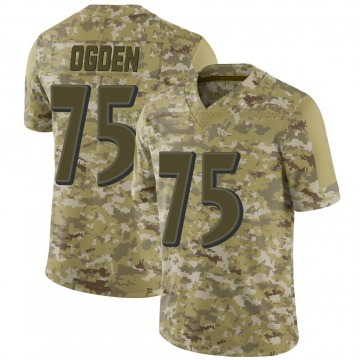Youth Nike Baltimore Ravens Jonathan Ogden Camo 2018 Salute to Service Jersey - Limited