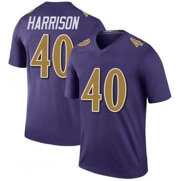 Youth Nike Baltimore Ravens Malik Harrison Purple Color Rush Jersey - Legend
