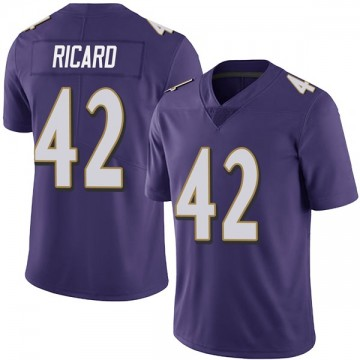 Youth Nike Baltimore Ravens Patrick Ricard Purple Team Color Vapor Untouchable Jersey - Limited